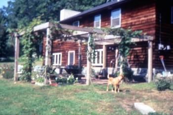 Barney at Harrisville