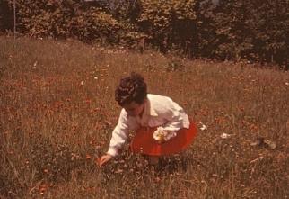 Abby flower picking